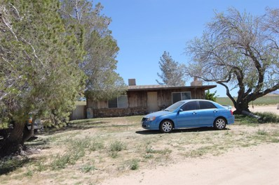 20144 Tussing Ranch Road, Apple Valley, CA 92308 - #: 503372
