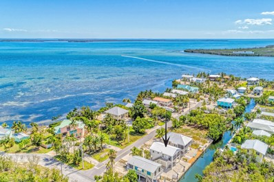 30828 Granada Avenue, Big Pine Key, FL 33043 - #: 580742