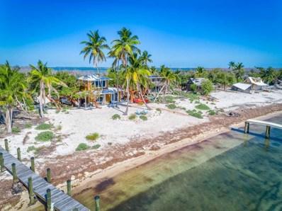 11 Cook, Cook Island Key, FL 33043 - #: 582295