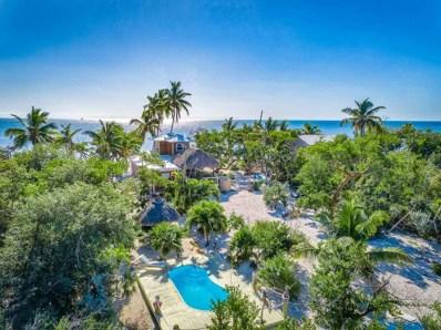 11 Cook Island, Big Pine Key, FL 33043 - #: 582894