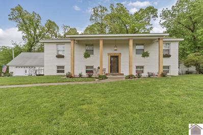 148 Green Hill Drive, Grand Rivers, KY 42045 - #: 102452