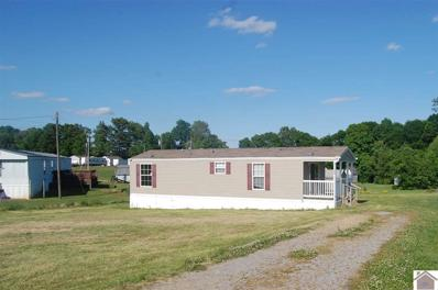 98 Seth Lane, Murray, KY 42071 - #: 102818