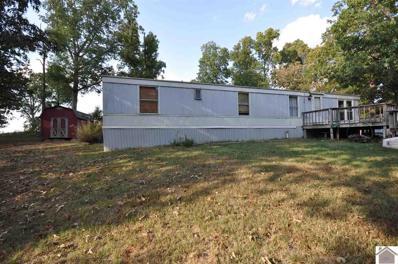 264 Daniels Dr., Gilbertsville, KY 42044 - #: 104808