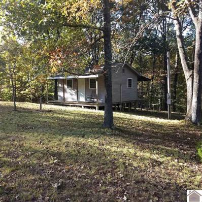 677 Justin Lane, Gilbertsville, KY 42044 - #: 105520