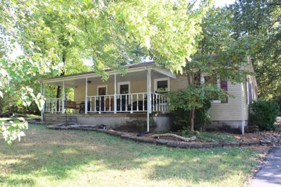 307 Hill Road, Grand Rivers, KY 42045 - #: 94443