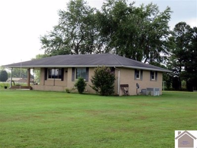 127 Washer Road, Kirksey, KY 42054 - #: 99107