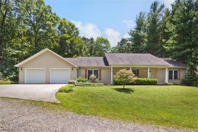 151 Whitaker Road, Fairview, NC 28730 - #: 3421608