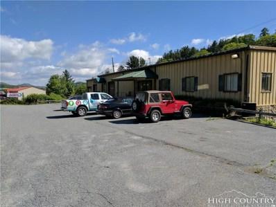 1301 Millers Gap Highway Highway, Newland, NC 28657 - #: 201500