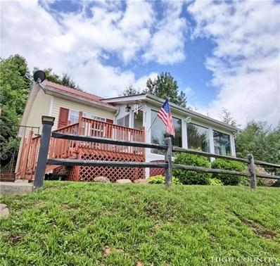 479 Meadow Ridge Drive, Jefferson, NC 28640 - #: 208334