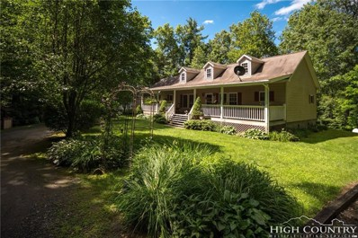1206 Mount Pleasant Road, Newland, NC 28657 - #: 208651