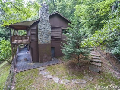 579 Willow Mountain Drive, Vilas, NC 28692 - #: 209327