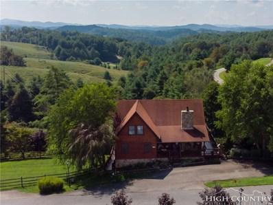85 Raven Road, Piney Creek, NC 28663 - #: 209658