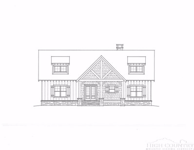 Lot 28 Twin Branches Road, Blowing Rock, NC 28605 - #: 209983