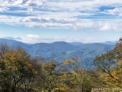 60 Silver Fox Trail, Banner Elk, NC 28604 - #: 210223
