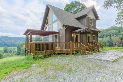 299 Camp Joy Road, Zionville, NC 28698 - #: 210417