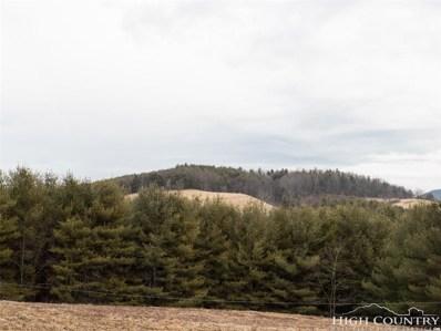 Tbd Bird\'s Eye View Lane, Fleetwood, NC 29826 - #: 210756