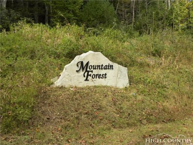 Tbd Lot 9 Shulls Mill Road, Boone, NC 28607 - #: 210807