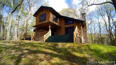 1742 Point Lookout Lane, Independence, VA 24348 - #: 211746