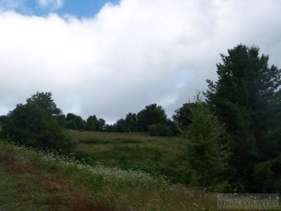 Tbd Rocky Hollow Road, Troutdale, VA 24378 - #: 39203775