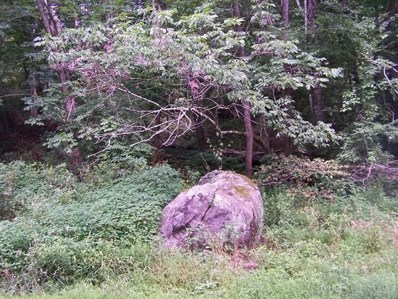 Tbd Rocky Hollow Road, Troutdale, VA 24378 - #: 39203781