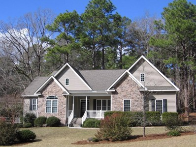 205 Selkirk Trail, Southern Pines, NC 28387 - #: 180569