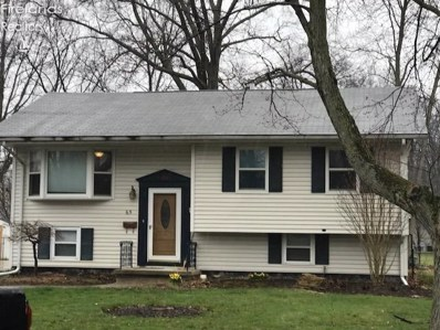 65 Spino Court, Norwalk, OH 44857 - #: 20181743