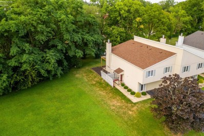 60 River Run Drive, Fremont, OH 43420 - #: 20185723