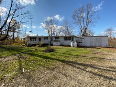 5566 County Highway 16, Sycamore, OH 44882 - #: 20195299