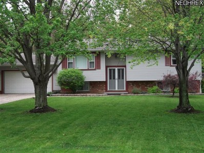 2742 Lydia, Lordstown, OH 44481 - #: 3407969