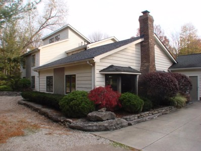 10785 Tanglewood Trl, Concord, OH 44077 - #: 3663327