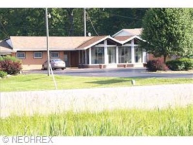 4100 State Route 5, Newton Falls, OH 44444 - #: 3686485