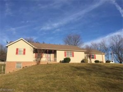 5225 State Route 39, Millersburg, OH 44654 - #: 3780945