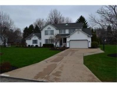 4315 Casa Bella Dr, Perry, OH 44081 - #: 3792350