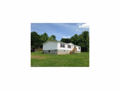 36846 State Route 124, Middleport, OH 45760 - #: 3802484