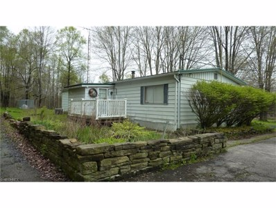 5889 Stoneville Rd, Windsor, OH 44099 - #: 3803685