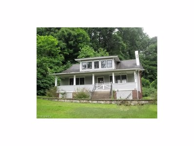 499 Fisher St, Middleport, OH 45760 - #: 3846206