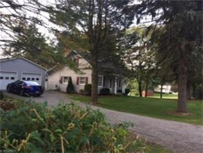 49871 Berkshire Rd, East Liverpool, OH 43920 - #: 3850610