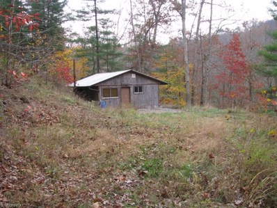 Bone Creek, Berea, WV 26325 - #: 3857168