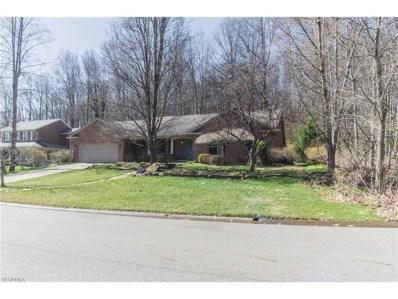 1401 Deer Hill Rd, Dennison, OH 44621 - #: 3885349