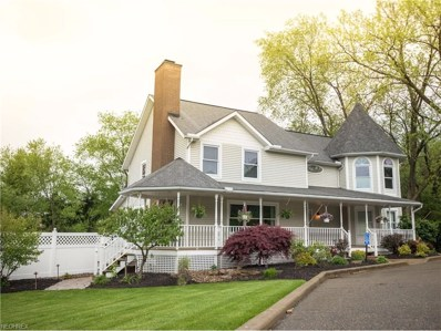 5351 Township Road 384, Millersburg, OH 44654 - #: 3898295