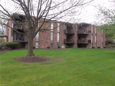 2520 N River Rd NORTHEAST UNIT B17, Warren, OH 44483 - #: 3898714
