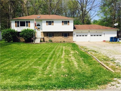 4404 Ticknor Ave, Newton Falls, OH 44444 - #: 3902027