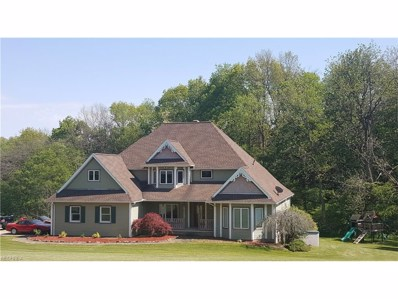 5466 Township Road 377, Millersburg, OH 44654 - #: 3904153