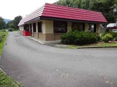50 Edgewood Ave, Richwood, WV 26261 - #: 3936085