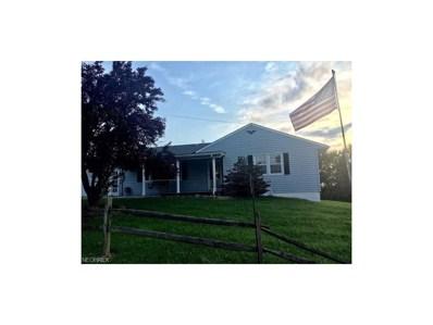 138 Proellochs, Wellsburg, WV 26070 - #: 3939882