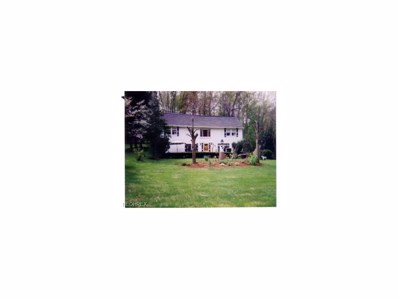 3352 Molly Dr, Akron, OH 44312 - #: 3959777
