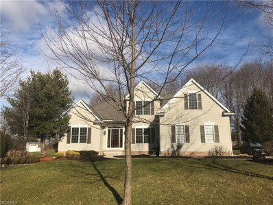 1128 Fireside Trl, Broadview Heights, OH 44147 - #: 3962632