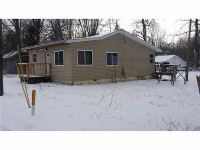 21 Bigelow Dr, Chippewa Lake, OH 44215 - #: 3967066