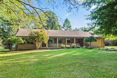 209 Moreland Dr, Canfield, OH 44406 - #: 3978996
