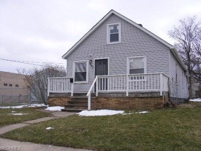 3463 E 76th St, Cleveland, OH 44127 - #: 3981868